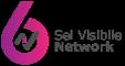 6 Visibile Logo